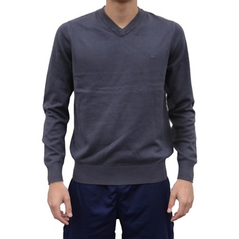 Vêtements Homme Sweats Timberland Washed Cotton Maglione Grigio Gris