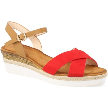 Chaussures Femme Sandales et Nu-pieds Suncolor 810-7 Rojo