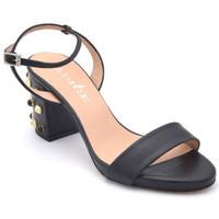 Chaussures Femme Sandales et Nu-pieds Adige asast Noir