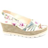 Chaussures Femme Sandales et Nu-pieds Högl 5-103247 Multicolor