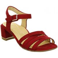 Chaussures Femme Sandales et Nu-pieds Ara sandale gra-hs 15911-06 rouge