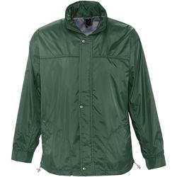 Vêtements Coupes vent Sols MISTRAL HIDRO SWEATER Verde