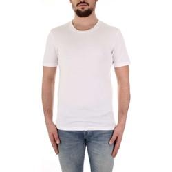 Vêtements Homme T-shirts manches courtes Selected 16057141 blanc