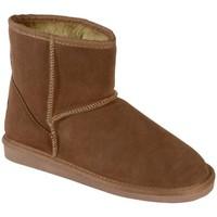 Chaussures Femme Bottes de neige The Divine Factory Bottine Fourée 605 Camel Marron
