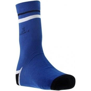 Accessoires textile Homme Chaussettes Torrente FASHION bleu