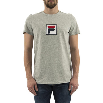 Vêtements Homme T-shirts manches courtes Fila 682099 evan 2.0 gris