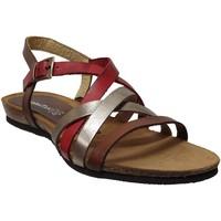 Chaussures Femme Sandales et Nu-pieds Xapatan 5466 Rouge/marron
