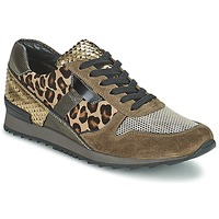 Chaussures Femme Baskets basses Kennel + Schmenger LIZAN Camel
