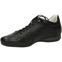 Chaussures Homme Baskets basses Guardiani ADLER at000-nero