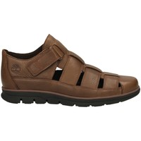 Chaussures Homme Sandales et Nu-pieds Timberland BRADSTREET FISHERMAN soil-marrone