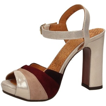 Chaussures Femme Sandales et Nu-pieds Chie Mihara CANDEL powde-polvere