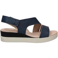 Chaussures Femme Sandales et Nu-pieds Ecco TOUCH SANDAL blumo-blu