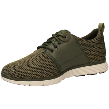 Chaussures Homme Baskets basses Timberland KILLINGTON L/F grale-verde