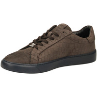 Chaussures Homme Baskets basses Café Noir GINNICA NABUK STAMPA marro-marrone