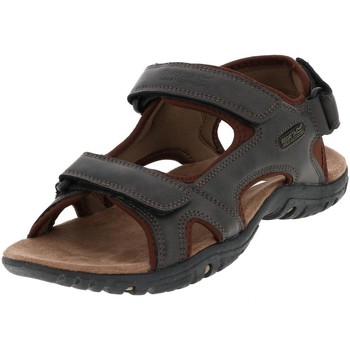 Regatta Homme Sandales  Haris Brown...