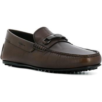 Chaussures Homme Mocassins Tod's XXM0LR0AJ20D9C Cioccolato