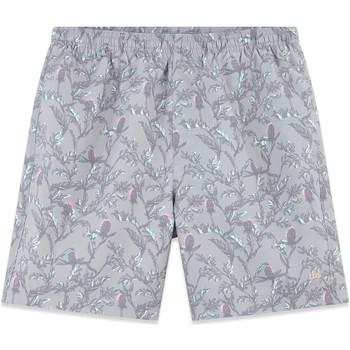 Vêtements Homme Maillots / Shorts de bain TBS COLBAIN Gris