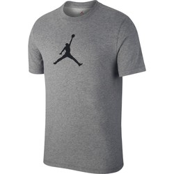 Vêtements Homme T-shirts manches courtes Air Jordan - T-Shirt Jordan Iconic 23/7 - AV1167 Gris
