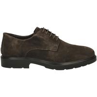 Chaussures Homme Derbies Igi&co UGL 21006 caffe-caffe_SS_