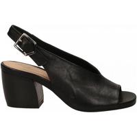 Chaussures Femme Sandales et Nu-pieds Salvador Ribes GRETA HARLEY nero
