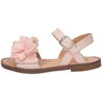 Chaussures Fille Sandales et Nu-pieds Romagnoli 3769-018 ROSA Rosa