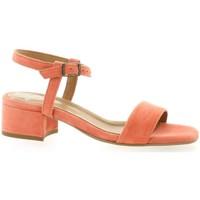 Chaussures Femme Sandales et Nu-pieds Exit Nu pieds cuir velours Orange