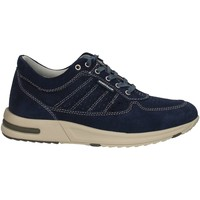 Chaussures Homme Baskets basses Valleverde 17845 bleu