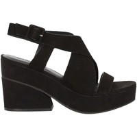 Chaussures Femme Sandales et Nu-pieds Elvio Zanon EJ0802 NOIR