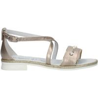 Chaussures Fille Sandales et Nu-pieds Nero Giardini P830480F écrou
