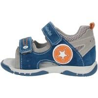 Chaussures Garçon Sandales et Nu-pieds Nero Giardini P823141M Gris et bleu orange