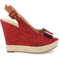 Chaussures Femme Espadrilles Ainy D8536 Rojo