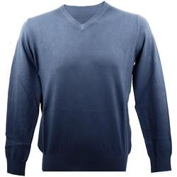 Vêtements Homme Pulls Real Cashmere Pull Bleu