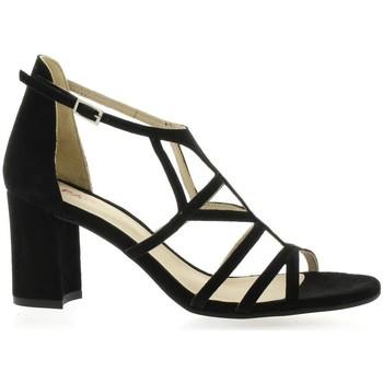 Chaussures Femme Sandales et Nu-pieds Vidi Studio Nu pieds cuir velours Noir