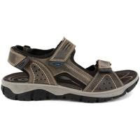 Chaussures Homme Sandales sport Imac 304370-009 GRIS Sandalias