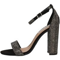 Chaussures Femme Sandales et Nu-pieds Steve Madden CARRSONR NOIR