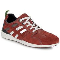 Chaussures Homme Baskets basses Geox U SNAKE.2 Marron / Brique
