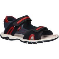 Chaussures Garçon Sandales et Nu-pieds Levi's VMIA0031S DAVENPORT Azul