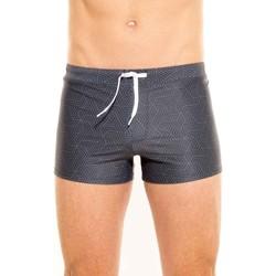 Vêtements Homme Maillots / Shorts de bain Waxx Boxer de Bain EXOTICA Anthracite