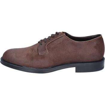 Chaussures Homme Derbies & Richelieu Triver Flight élégantes daim marron