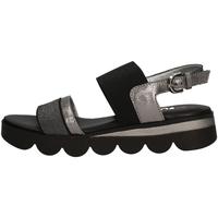 Chaussures Femme Sandales et Nu-pieds The Flexx MELLONY PIERRE