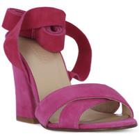 Chaussures Femme Sandales et Nu-pieds Le Fabian FUXIA CAMOSCIO Rosa