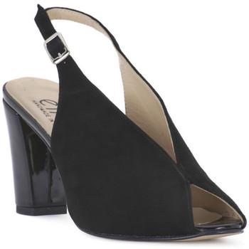 Chaussures Femme Sandales et Nu-pieds Ellen CAMOSCIO NERO Nero