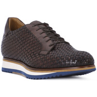 Chaussures Homme Baskets basses Florance DAFNE MORO Marrone
