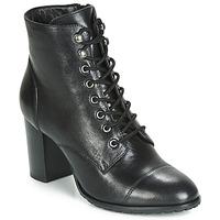 Chaussures Femme Bottines Ravel MARCO Noir