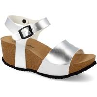 Chaussures Femme Sandales et Nu-pieds Shoes&blues M-77 Plata