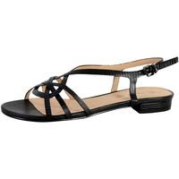Chaussures Femme Sandales et Nu-pieds The Divine Factory Sandale Femme FJ3684 Noir