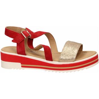 Chaussures Femme Sandales et Nu-pieds Igi&co DPY 31917 rosso
