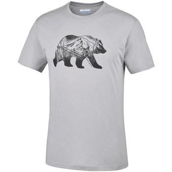 Vêtements Homme T-shirts manches courtes Columbia Baker Brook Gris