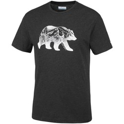 Vêtements Homme T-shirts manches courtes Columbia Baker Brook Noir
