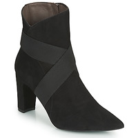 Chaussures Femme Bottines Perlato VELOTE Noir